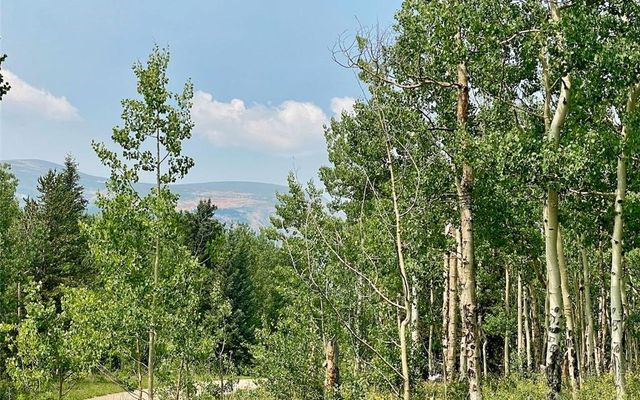 295 Silver Plume Road - photo 1