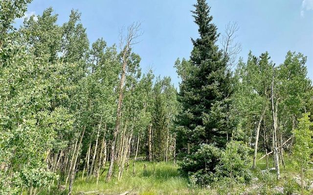 295 Silver Plume Road - photo 11