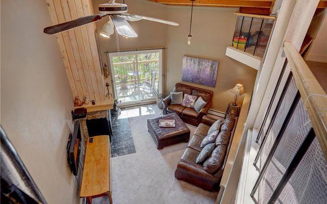 Treehouse Condo 303 - photo 18