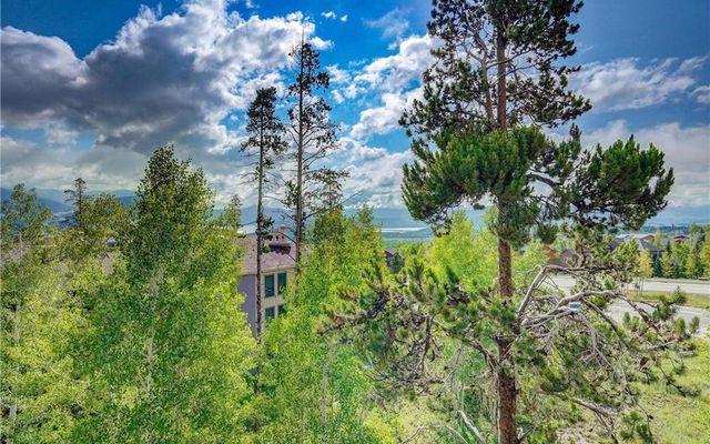 Treehouse Condo 303 - photo 21