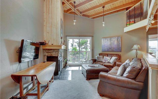 Treehouse Condo 303 - photo 6