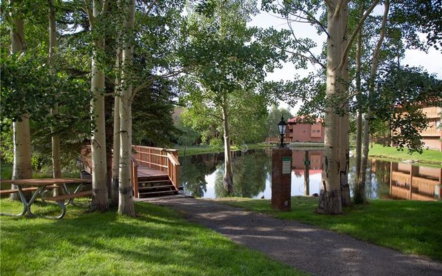 Lagoon Town Homes D - photo 19