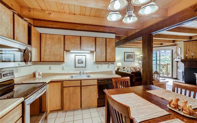 Treehouse Condo 106 - photo 4