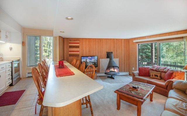 1121 Ski Hill Road #88 BRECKENRIDGE, CO 80424