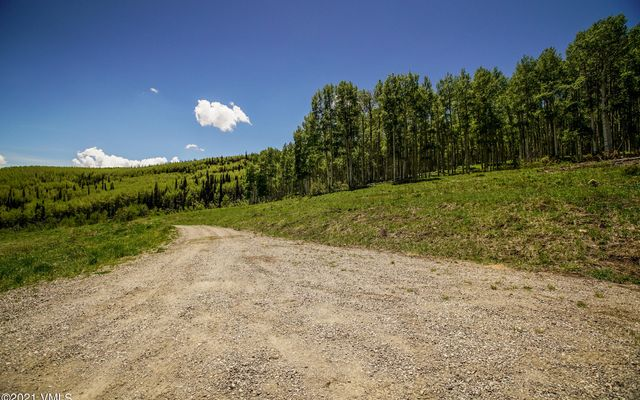 3450 County Road #151 - photo 76
