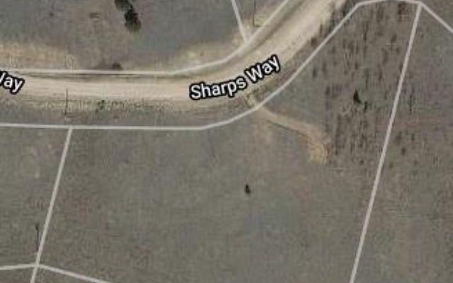 636 Sharps Way - photo 10