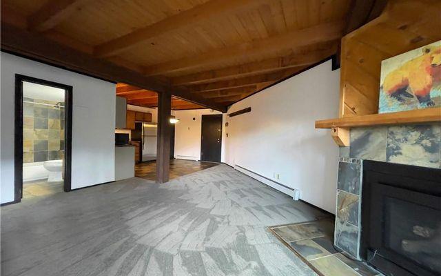 Treehouse Condo 101 - photo 1