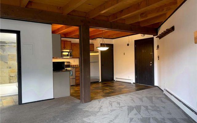 Treehouse Condo 101 - photo 8