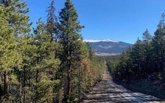 1259 Sequoia Drive TWIN LAKES, CO 81251
