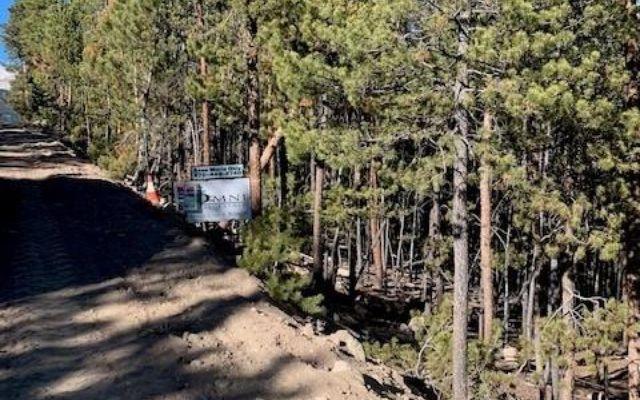 1259 Sequoia Drive - photo 1