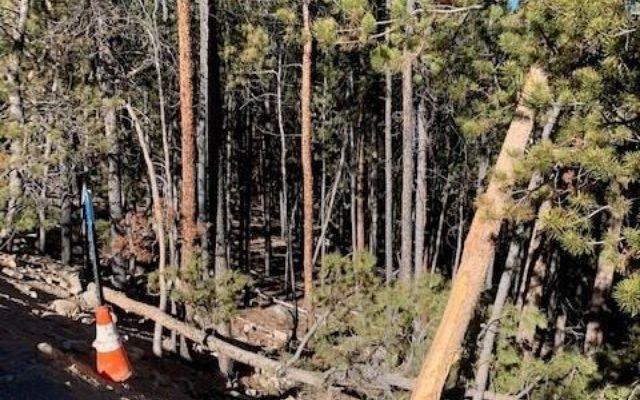1259 Sequoia Drive - photo 4