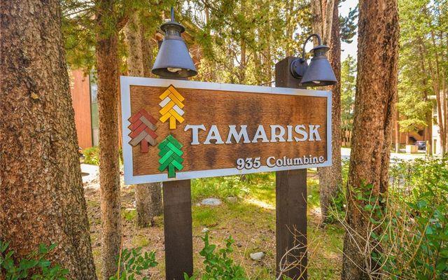 Tamarisk Condo 204 - photo 23