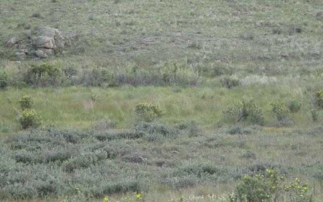 356 Hopi Circle - photo 6