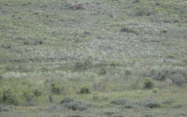 356 Hopi Circle - photo 7