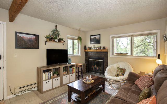 Liftview/Sunridge Condos 1 104 - photo 1