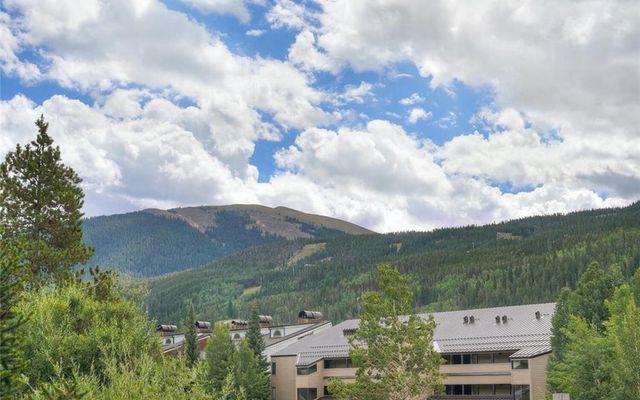 Oro Grande Lodge 401 - photo 28