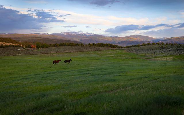 1537 Eby Creek Road - photo 40