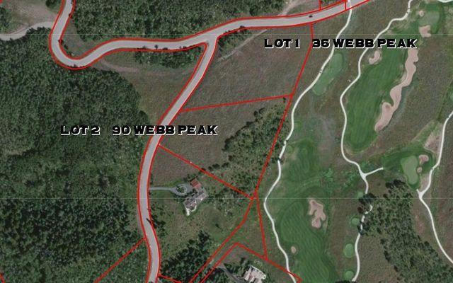 90 Webb Peak Edwards, CO 81632
