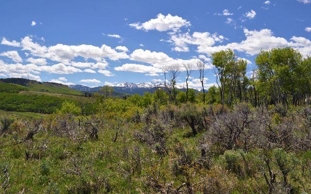 90 Webb Peak - photo 2