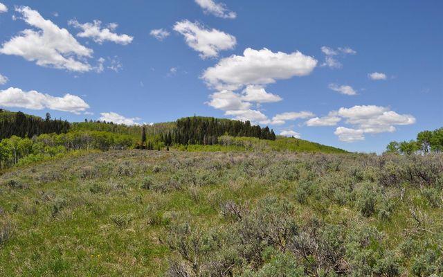 36 Webb Peak - photo 13