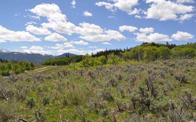 36 Webb Peak - photo 9