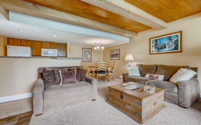 Lodge At Copper Mountain Condo 204 - photo 1
