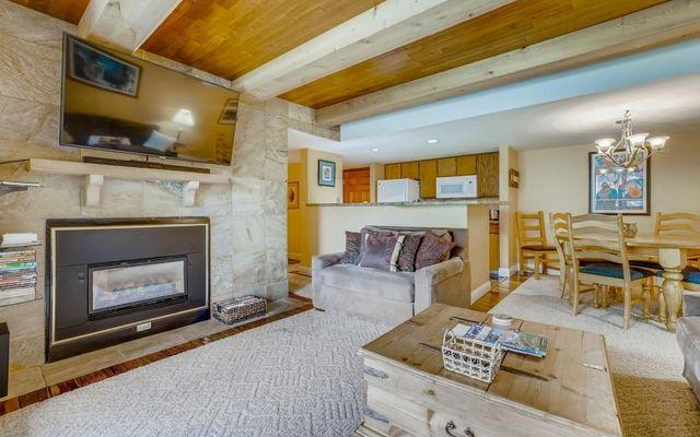 Lodge At Copper Mountain Condo 204 - photo 11