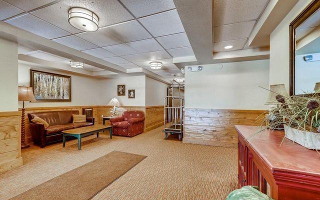 Lodge At Copper Mountain Condo 204 - photo 9
