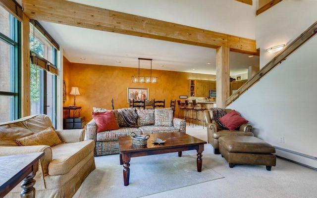 Ski Tip Ranch Condominiums 8709 - photo 3