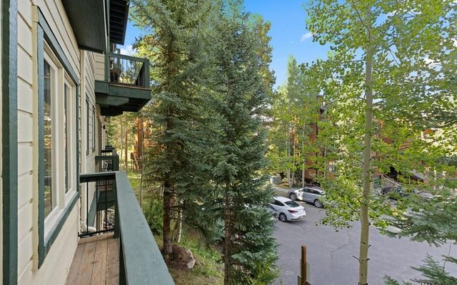 Antlers Lodge Condominiums A-23 - photo 19