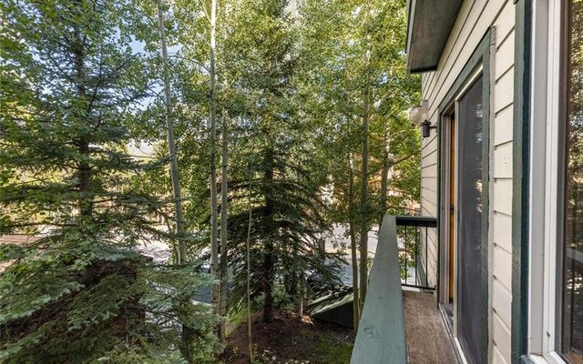 Antlers Lodge Condominiums A-23 - photo 20