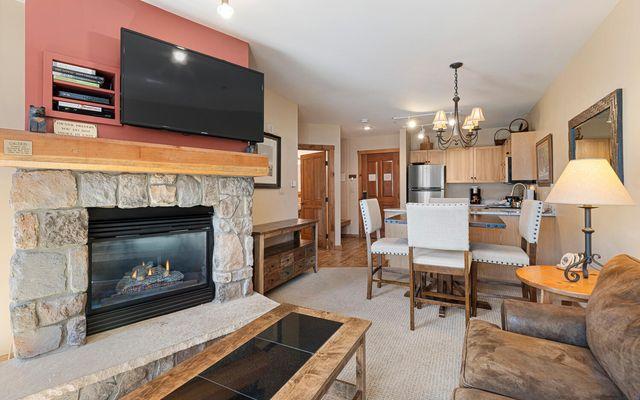 Buffalo Lodge And The Dakota Condos 8522 - photo 13
