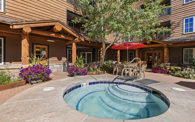 Buffalo Lodge And The Dakota Condos 8522 - photo 3