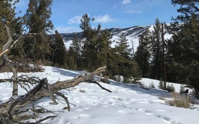 Tbd Middle Fork - photo 30