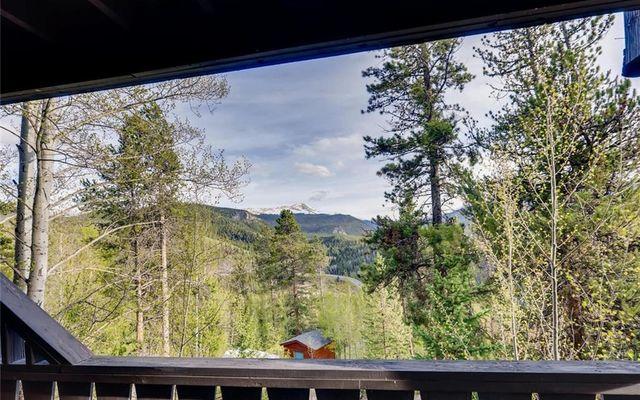 Tyrollean Terrace Condo 5a/6a - photo 28
