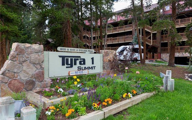 Tyra Summit Condo b1a - photo 30