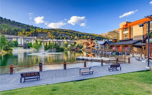 Spruce Lodge Condo 193 - photo 14