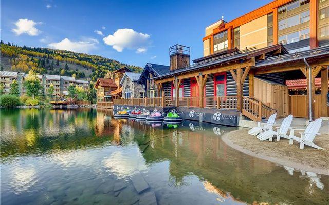 Spruce Lodge Condo 193 - photo 15