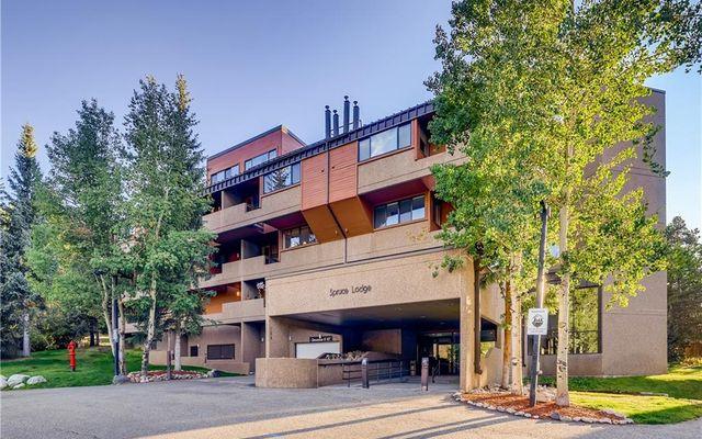 Spruce Lodge Condo 193 - photo 18