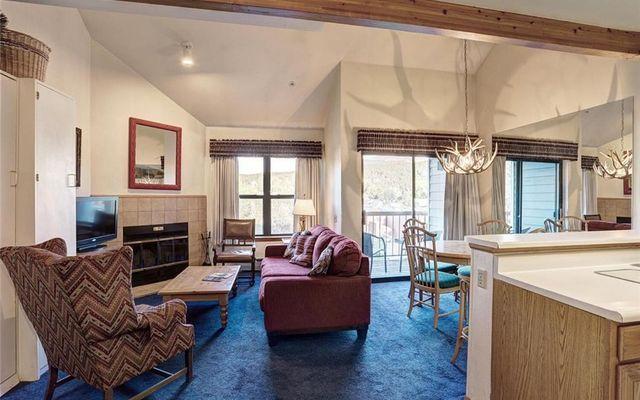 River Mountain Lodge Condo 306 - photo 5