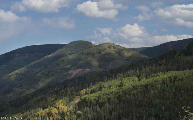 The Ridge At Vail Sub 5b - photo 42
