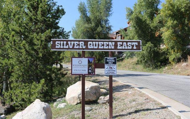 Silver Queen Condo 101 - photo 23