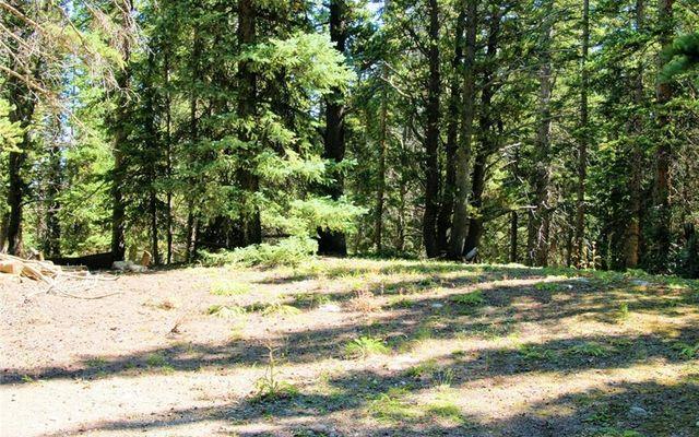 516 Mountain View Drive FAIRPLAY, CO 80440