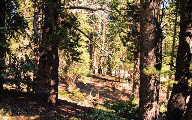 516 Mountain View Drive - photo 18