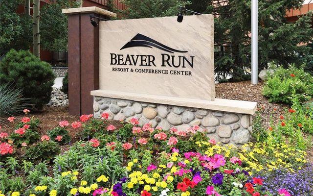 Beaver Run Condo 21180 - photo 1