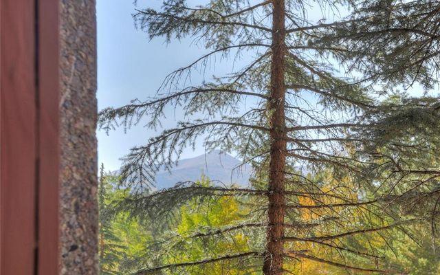 Beaver Run Condo 21180 - photo 4