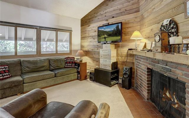 Forest Haus Condo 206 - photo 5