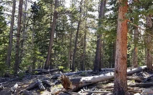 463 Gold Trail Circle - photo 7