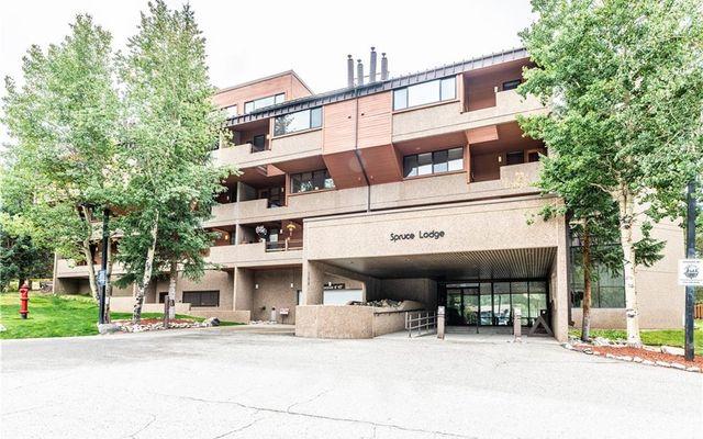 Spruce Lodge Condo 291 - photo 19