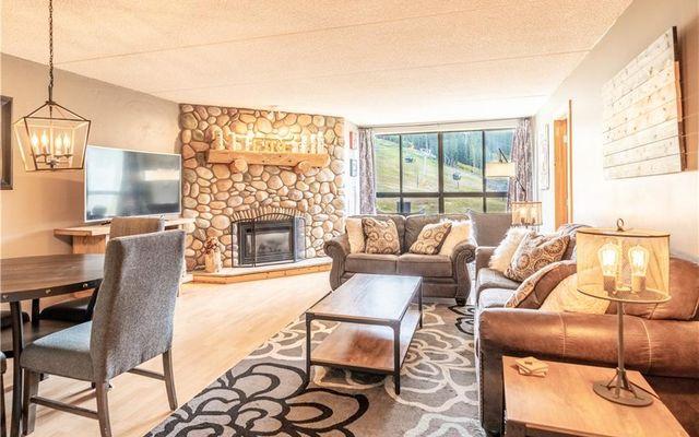 Spruce Lodge Condo 291 - photo 3